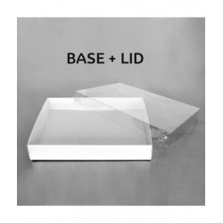 CLEAR LID BISCUIT BOX RECTANGLE 12.5x10x2in