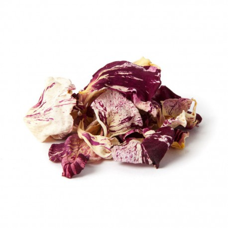 Dried Edible Candy Striped Rose Petals- 5g