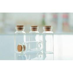 Mini Glass Craft Jars with Cork Top